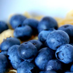 Blueberries for No Sugar Added Cereal